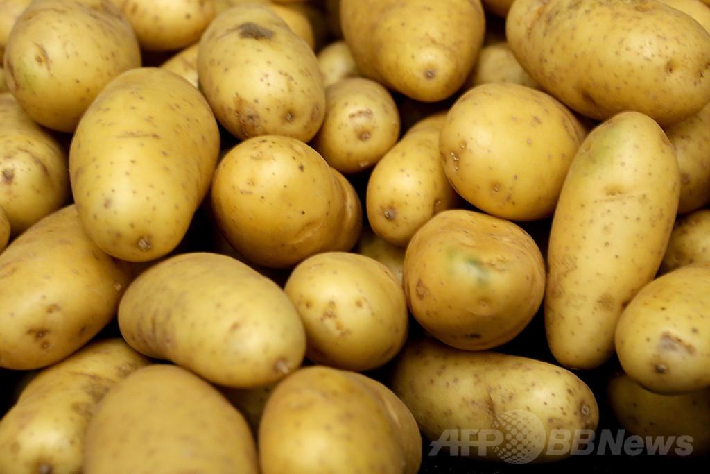 米男性のポテトサラダ作り計画、資金調達サイトで90万円集める