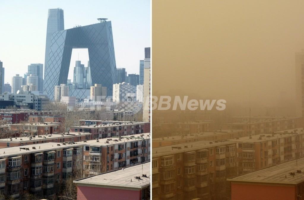 黄砂に含まれる菌から納豆、金沢大学が開発 臭い抑える
