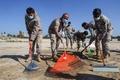 嵐で漂着したタールを除去、ウミガメ産卵地の砂浜 レバノン