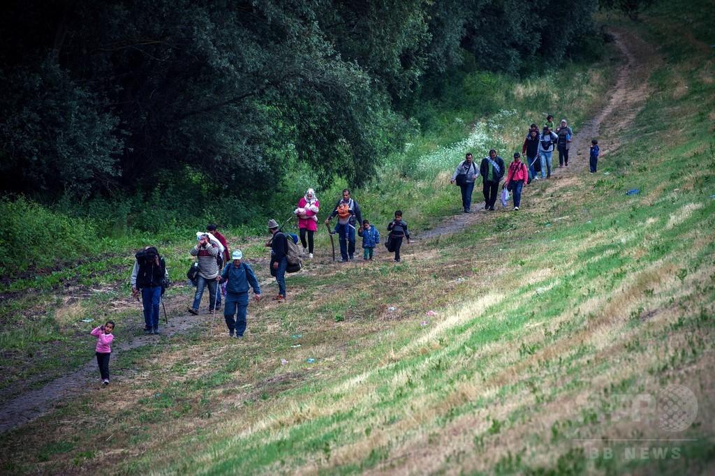 ハンガリー、移民阻止フェンス設置へ セルビア国境175キロ