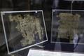 エジプト最古のパピルス文書、初展示 カイロの考古学博物館