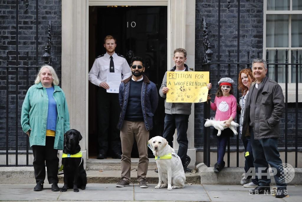 愛犬と一緒にEU離脱反対、ロンドン中心部で「ウーファレンダム」行進