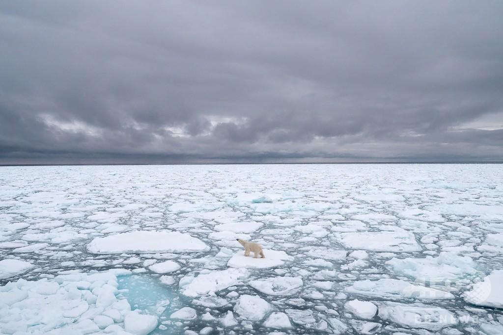 北極圏スバルバル諸島で史上最高気温、21.7度を観測
