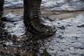 米加州でパイプライン破裂、太平洋に石油流出