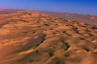 サハラ砂漠に移民300人置き去り、10人死亡