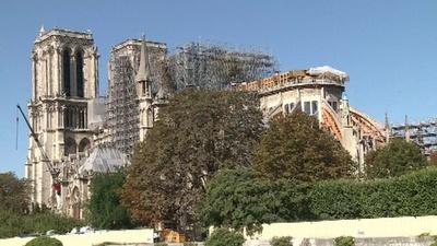 動画:ノートルダム大聖堂、遠い再建の道のり 火災から半年