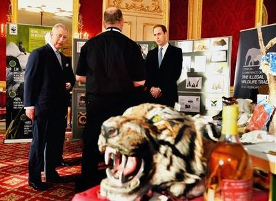 野生動物の違法取引の根絶を、40か国以上が宣言に署名