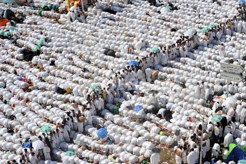 国際ニュース:AFPBB Newsイスラム教の大巡礼ハッジ、最も危険な「悪魔への投石」儀式始まる