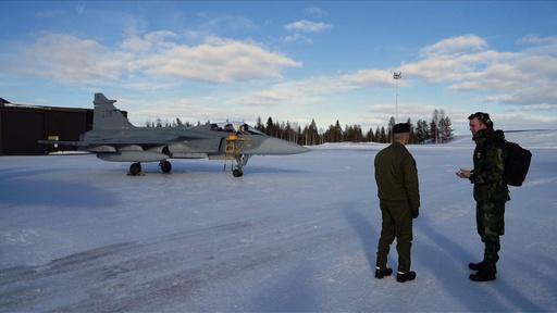 動画:戦闘機が北極圏を飛び回る、スウェーデンとフィンランドが共同軍事演習