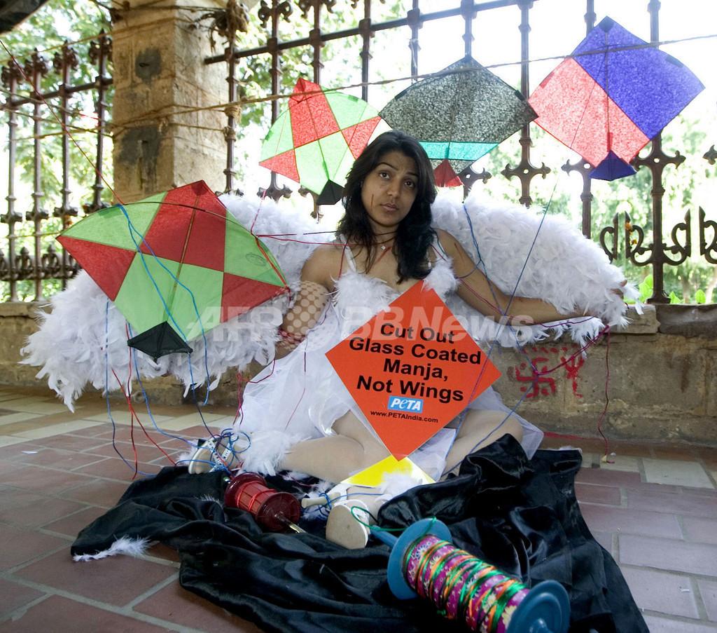 凧揚げの野鳥被害にPETAが抗議
