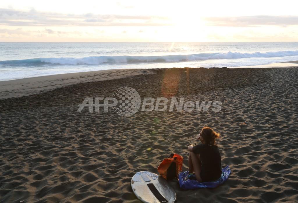 男性がサメに襲われ片脚失う、仏レユニオン島