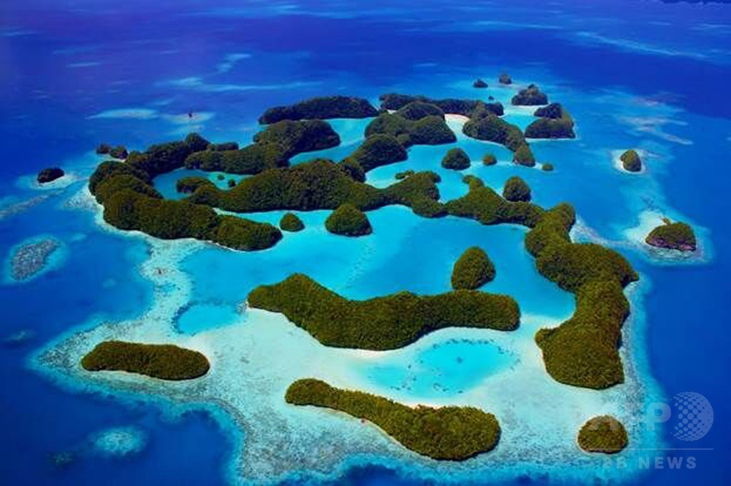 パラオ、周辺海域に巨大海洋保護区設置へ スペイン国土と同等
