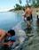 希少種メガマウスザメ、発見されたが食べられる フィリピン