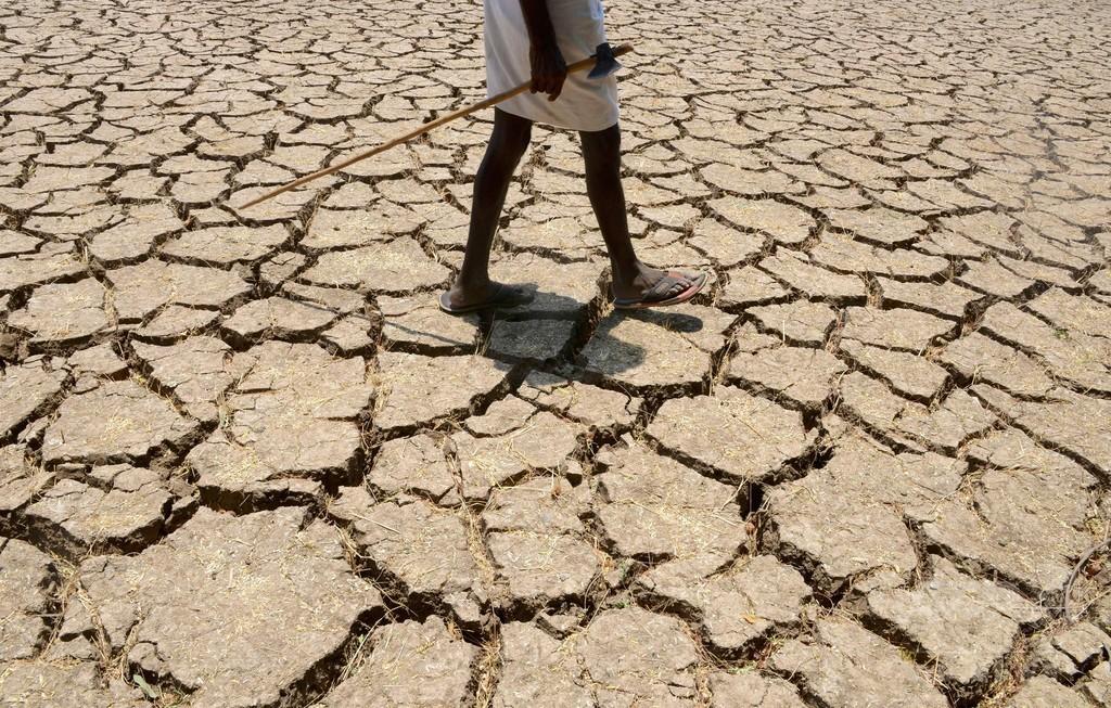 世界の平均気温上昇2度未満、実現の可能性は5% 研究
