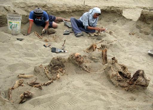 550年前の子どものいけにえか、遺骨140体発見 ペルー