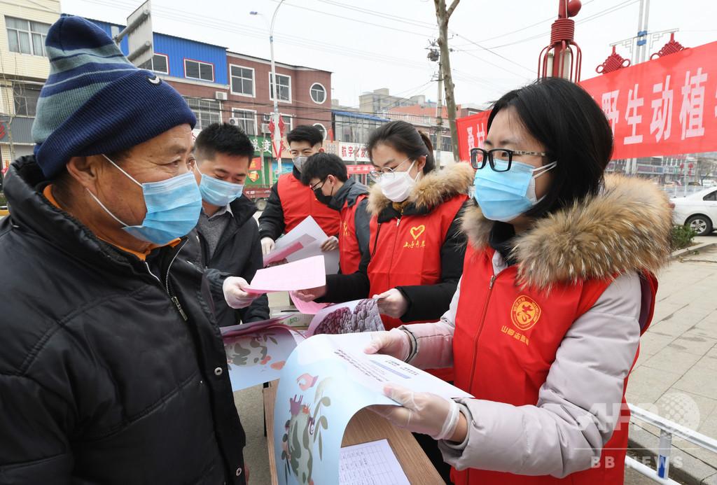 中国の絶滅危惧種の動植物、個体数が増加 パンダやトキなど