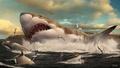 古代の巨大サメ、暖かい浅瀬の「託児所」減少で絶滅か 研究
