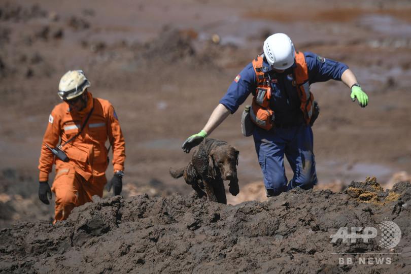 ブラジルのダム決壊、死者134人に 199人依然行方不明