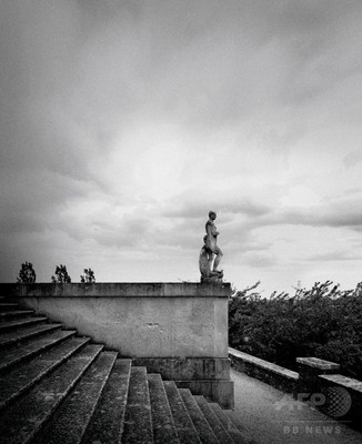 「ボッテガ・ヴェネタ」ヴェネツィアの庭を表現した香り