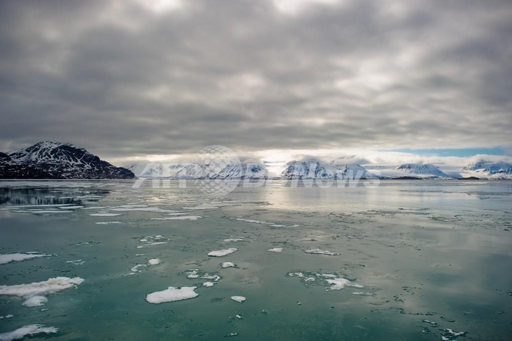 北極圏、今後数十年で大幅「緑化」 温暖化影響