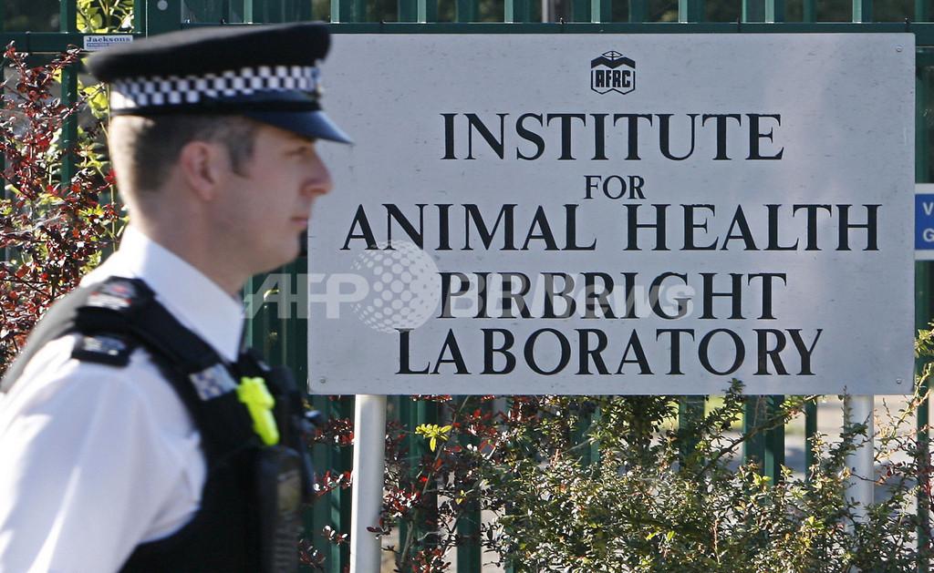 英国で発生した口蹄疫、国立の研究所が感染源の可能性が浮上