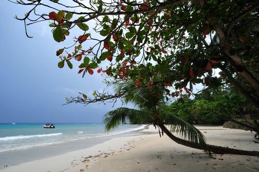 団結か水没か、小島しょ国の気候変動サミット開催