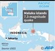 インドネシア東部マルク諸島沖でM7.3の地震 津波警報はなし