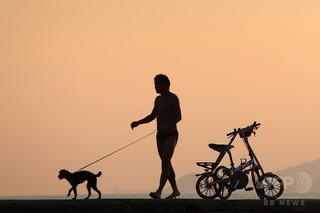 散歩中の犬がお手柄、脱獄トンネル嗅ぎつける ギリシャ