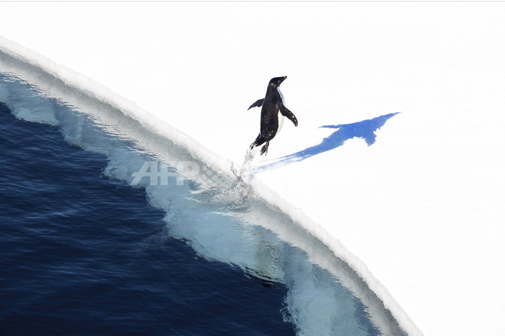 火山活動で南極氷床の融解加速か、米研究
