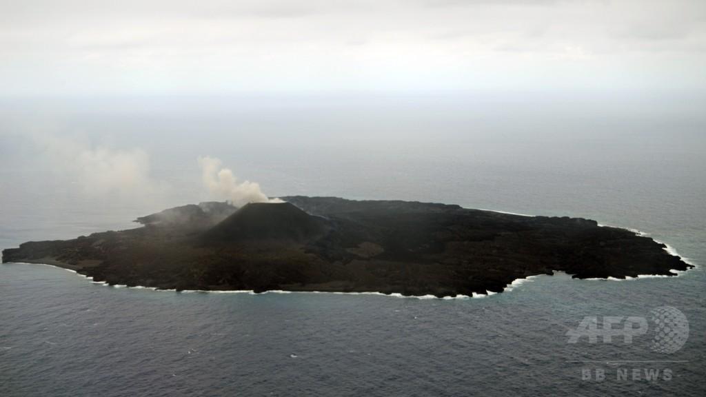溶岩で覆われた西之島、花咲き鳥歌う島になるか
