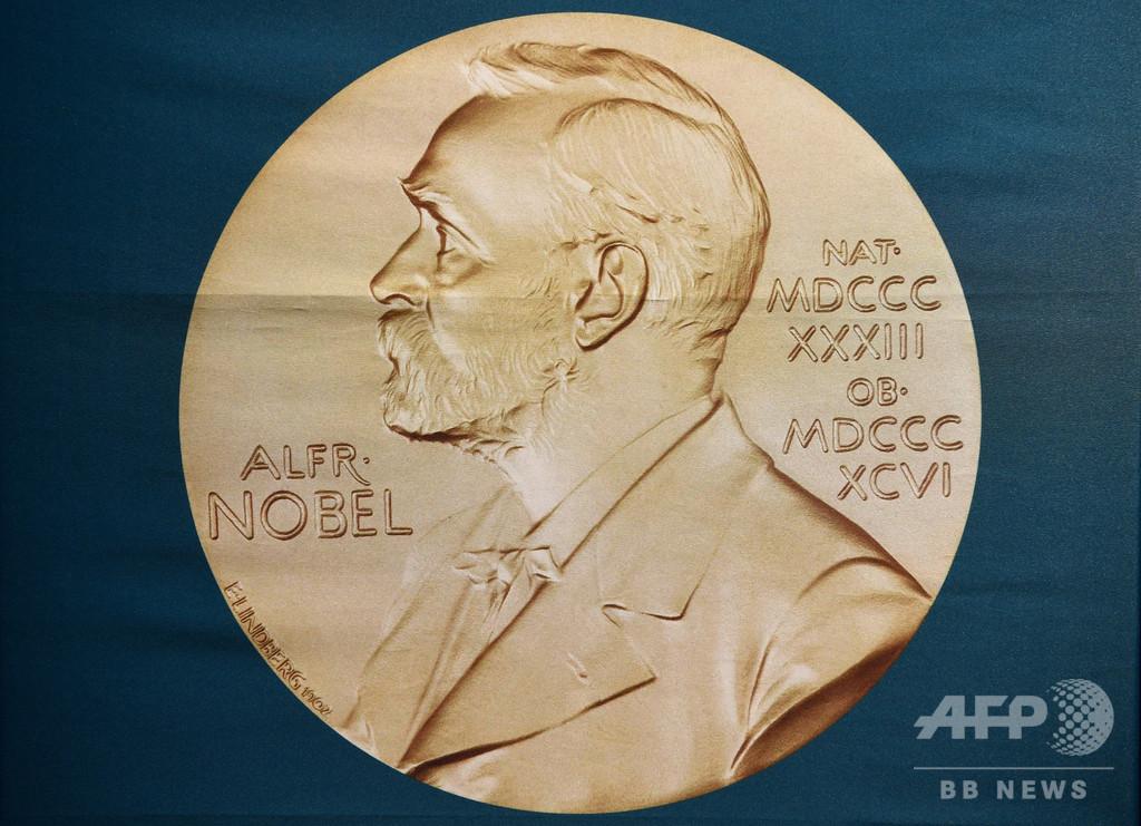 国際ニュース:AFPBB News2019年のノーベル医学生理学賞、米英の3氏に