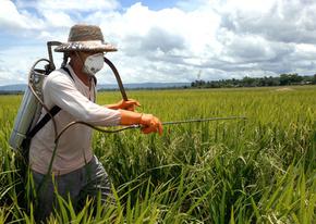 「より安全な農薬」の化合物、有毒水銀生成の恐れ 国際研究