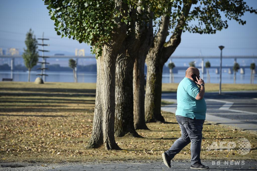肥満のまん延、遺伝子も関連 主な原因は環境