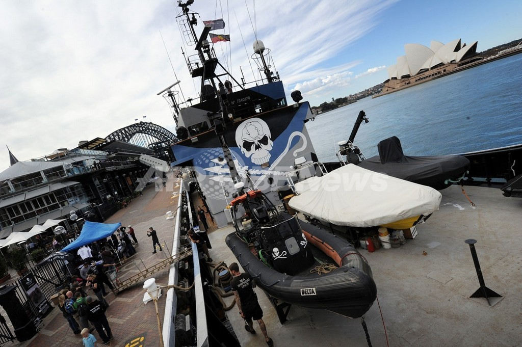 シー・シェパード、日本の調査捕鯨船を妨害したと発表