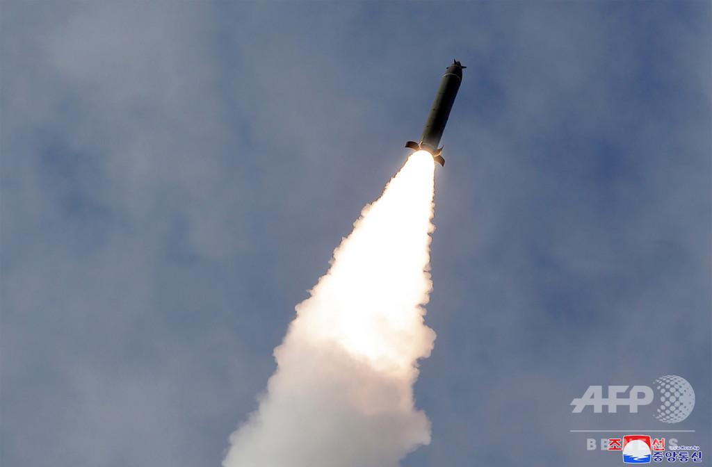 金委員長、長距離砲兵の火力打撃訓練を「指導」 KCNA