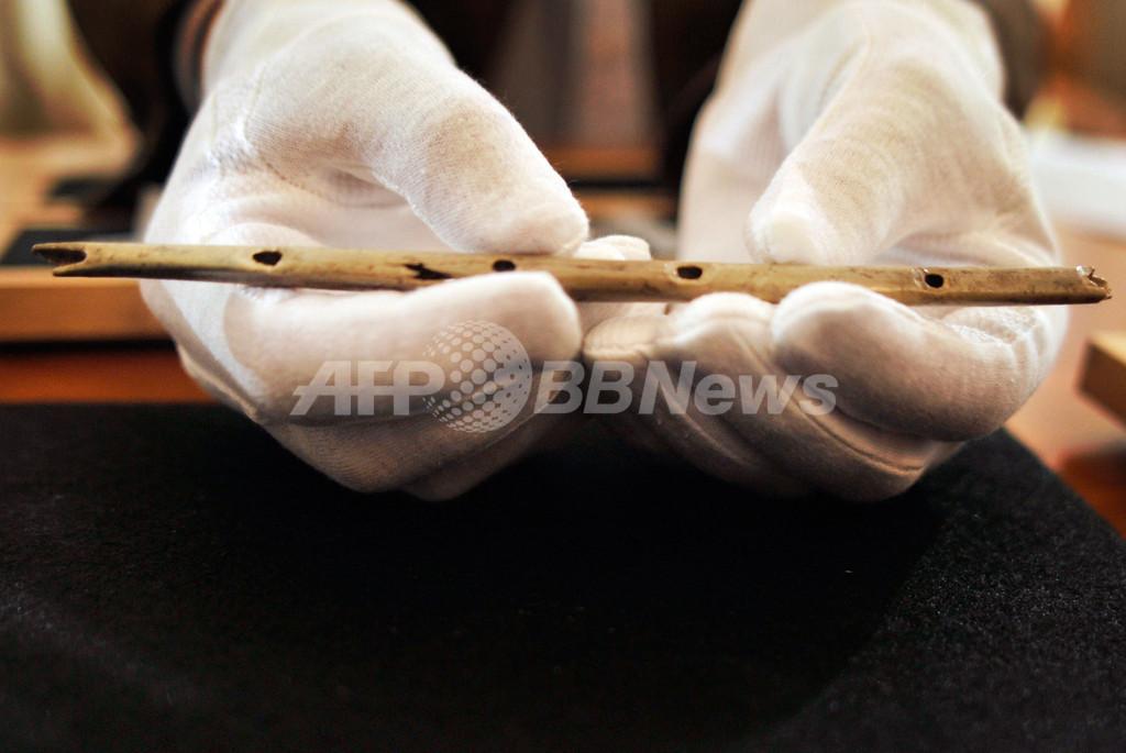 世界最古の楽器か、石器時代の「フルート」を発掘 ドイツ