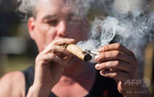 カナダ、来年半ばまでに嗜好品の大麻合法化へ 近く与党が法案