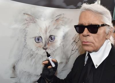 故ラガーフェルド氏、愛猫に巨額の遺産残す?
