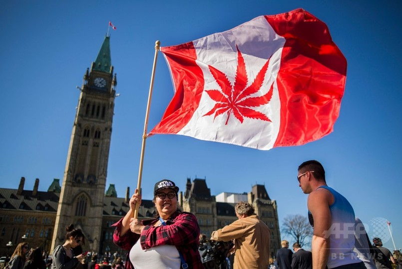 カナダ、2017年にマリフアナ合法化 保健相が表明
