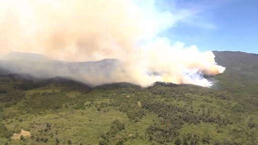 動画:アフリカ2番目の高さ誇る世界遺産のケニア山、森林火災で800平方キロ焼失