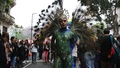 動画:南米でLGBTIQパレードや行進、同性の結婚や養子縁組の承認求める