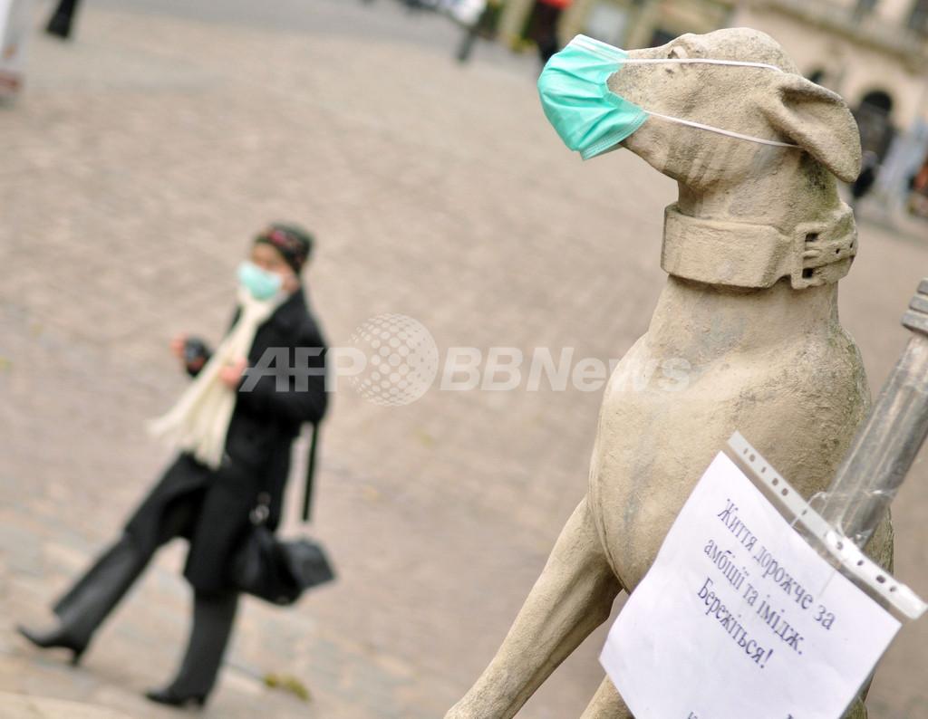 新型インフルによる世界の死者、6000人超える WHO