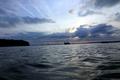 世界最大の幽霊船団、保存活動進む 米メリーランド州