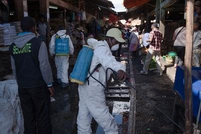 ペスト流行のマダガスカル、死者74人に