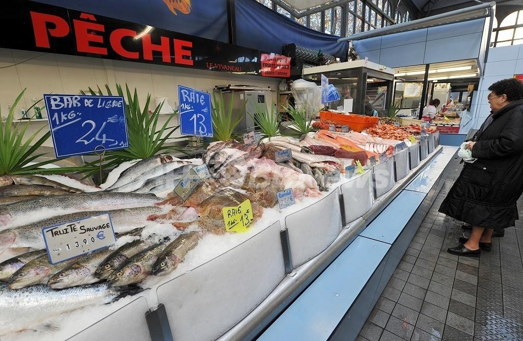 魚をよく食べる女性は心臓も健康に、デンマーク研究
