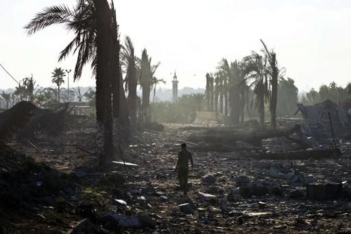 ガザ空爆、地区内の動物園にも大きな被害