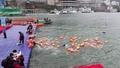 動画:長江を渡れ、冷たい水飛び込んで1500m寒中水泳 中国