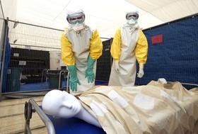 エボラ熱死者4900人に迫る、感染者ほぼ1万人に WHO