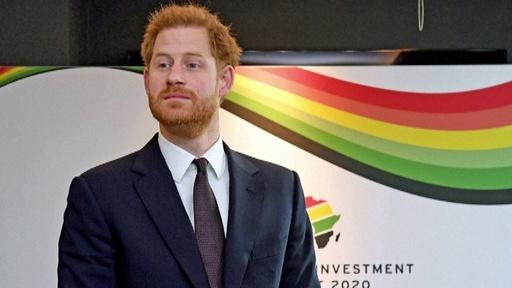動画:ヘンリー王子、カナダへ向け離英 アフリカ諸国指導者らと会談後