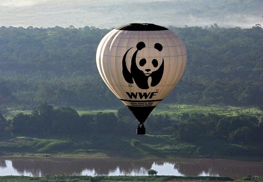WWF支援事業の密猟対策部隊、先住民らを殺害・拷問か 第三者調査へ